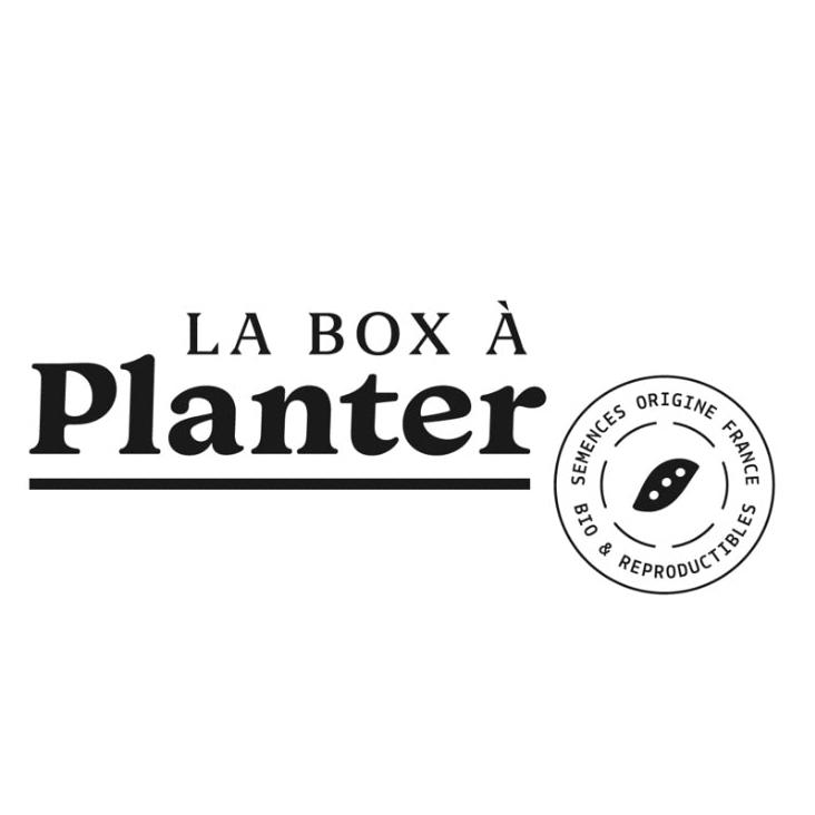 box a planter